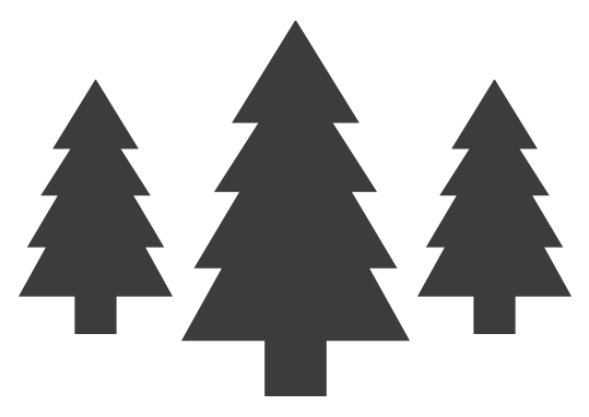 Christmas_Booking